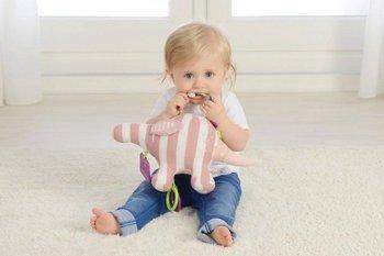 Zabawka sensoryczna Mały Mrówkojad 0m+ Dolce